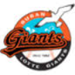 Lotte Giants