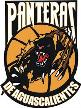 Panteras