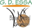 GDESSA/Barreiro