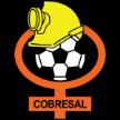 Chile Cobresal Universidad de Concepción – Cobresal, 25/10/2014 en vivo