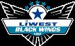 Black Wings Linz