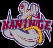 Hockey Sweden Haninge Anchors HC Haninge Anchors – Wings HC Arlanda, 23/11/2014 en vivo