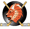 Hockey Switzerland Visp Live streaming Visp v Avtomobilist Yekaterinburg tv watch August 21, 2014
