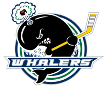 OHL Plymouth Whalers Plymouth Whalers – Windsor Spitfires, 28/11/2014 en vivo