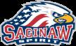 OHL Saginaw Spirit Windsor Spitfires – Saginaw Spirit, 29/11/2014 en vivo