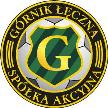 Górnik